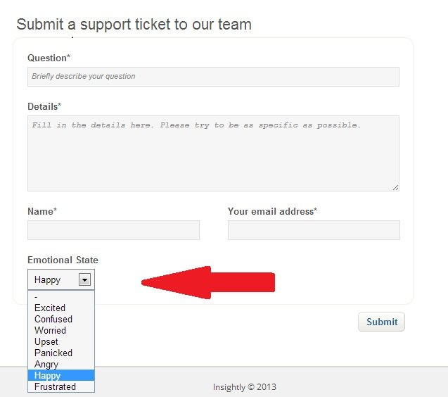 Insightly_Support_ticket_page